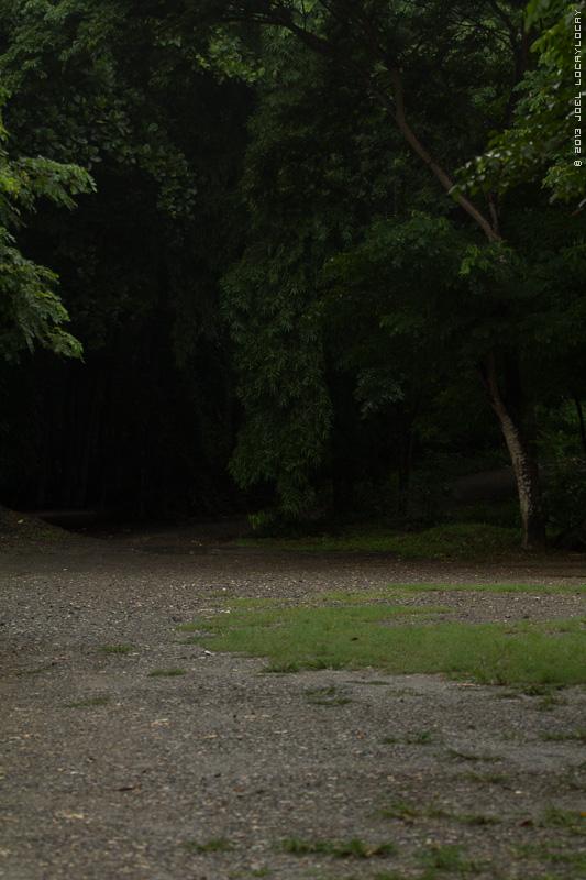 130629-jrl_familypark_rainymorning_002